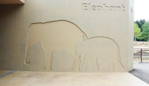 円山動物園で一番人気ゾウ舎。気になるゾウの愛称も公開。必見です。