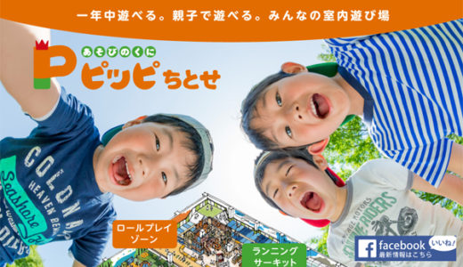 ボーネルンド監修!6ヶ月~小学校6年生まで遊べるピッピ千歳。