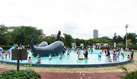 水遊びが人気の農試公園は、他にもいろいろ遊べる公園としておすすめ
